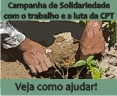 solidariedade